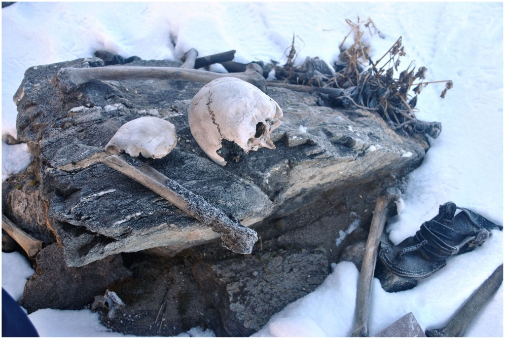 Bones & remains (from 800 AD) by the hundreds, preserved by the cold.