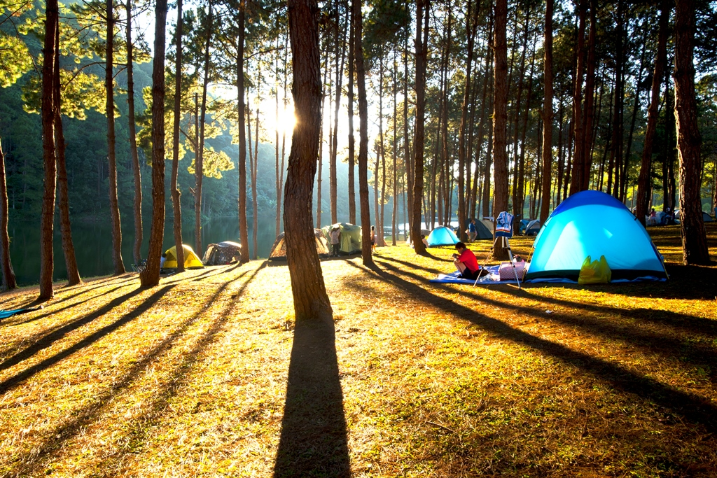 Peaceful camping experience!