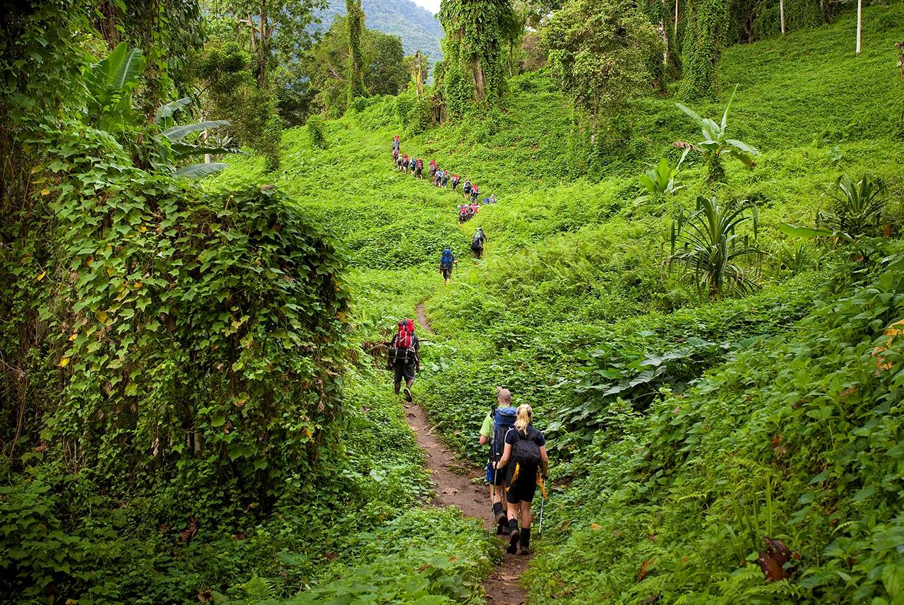 Kokoda Trek Papua New Guinea