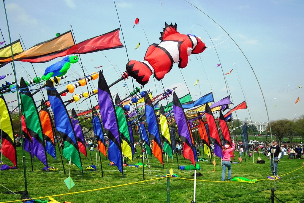 Colorful display at the Kite Festival