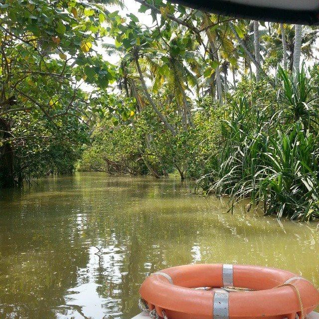 Boat ride at Poovar Island