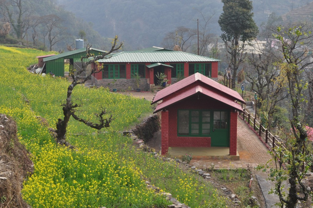 Camping in the Himalayas is a treat to the senses!