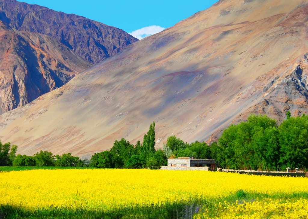 The Other Side of Zanskar Valley in Summers