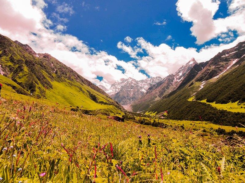 uttarakhand_valley_of_flowers_trek