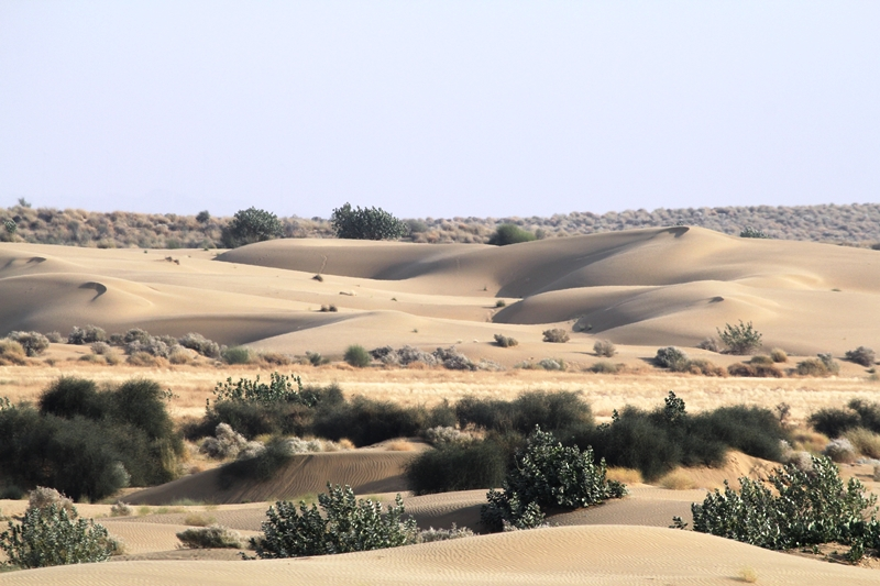 a_view_on_sams_sand_dunes