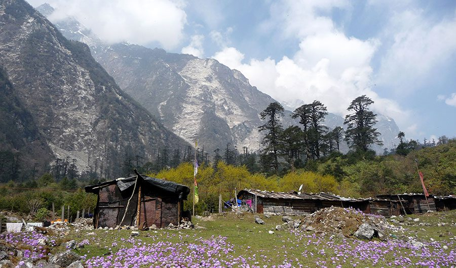lachung-north-sikkim